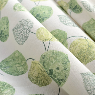 The Eucalyptus Moment Green Leaf Roman Blind 1